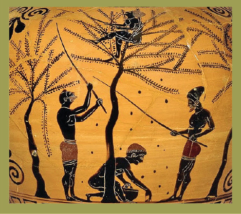 Essere vegetariani nell'antica Grecia